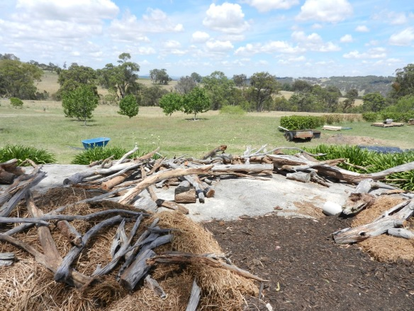 Wood, hay piles containing lizard, snake, reptile homes
