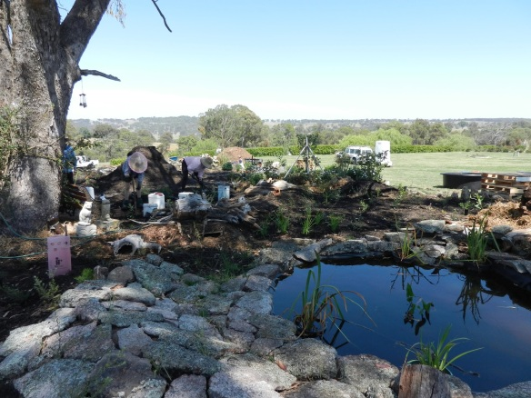 in progress, top pond complete, planting and systems being created