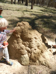 A white ant (termite) mound - white ants are so amazing! I thought they demonstrated an excellent completed project, smile.