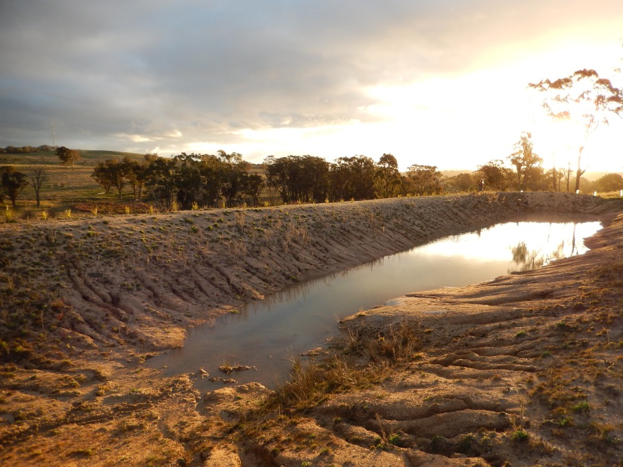 20140828 As full as the dam has been so far. You can see the erosion lines in the foreground and some of the pioneer plants on the far bank